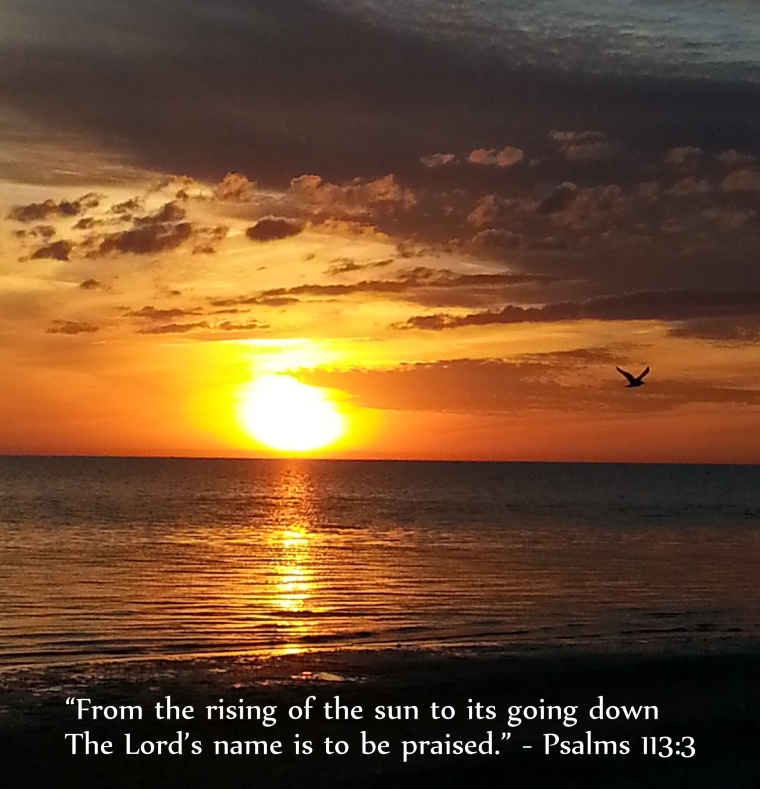 Photo credit: Miss Kristen Pine Island, Florida