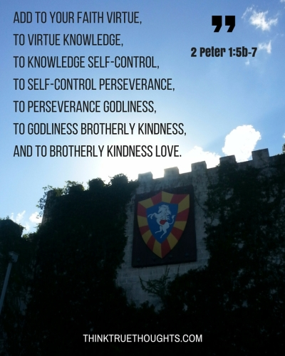 add to your faith virtue, to virtue knowledge, to knowledge self-control, to self-control perseverance, to perseverance godliness, to godliness brotherly kindness, and to brotherly kindness love.